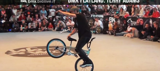 L'incredibile flatland bmx di Terry Adams al Pro World Circuit