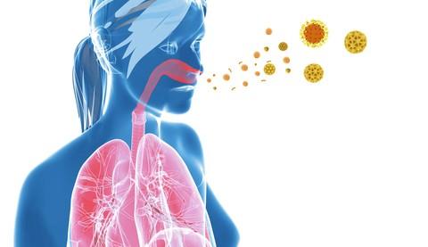 """Alimentazione e allenamento bici: curiamo la """"manutenzione"""" del sistema immunitario."""