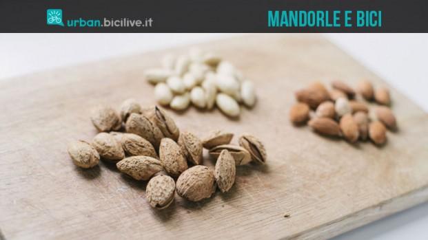 Le mandorle e il ciclismo: uno snack completo dalle numerose proprietà