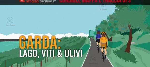 Dal lago di Garda agli ulivi in bdc: consigli e traccia GPS scaricabili