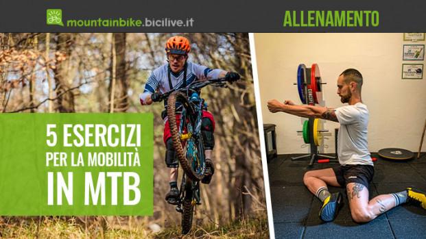 Cinque esercizi per migliorare la mobilità articolare in MTB